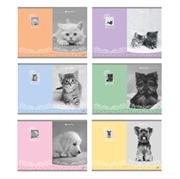 Bilježnica A5, na crte, 54 listova, sweet pets