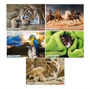 Kolaž papir Target, Animal, 20 listova